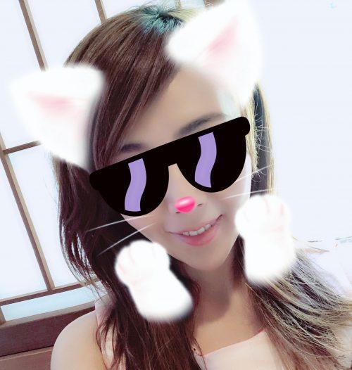 チンチラ美猫プロフィール
