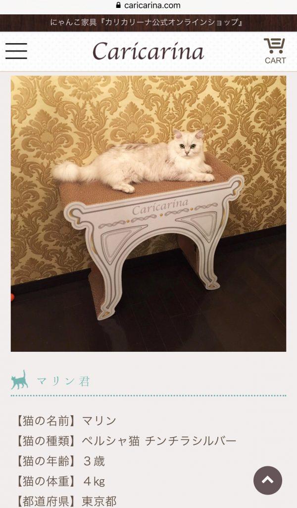 オシャレ爪とぎ猫用ソファ